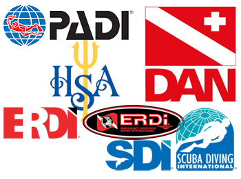 PADI:  Professional Association of Diving Instructors.  Located in White Bear Lake, MN, MidWest School of Diving is the Twin Cities, place to go for PADI instruction, certification and great diving equipment at affordable prices.  Scuba diving with PADI Instructors, Dive Centers and Resorts can help transform your life through education, experience, equipment and environmental conservation.